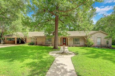 Conroe Single Family Home For Sale: 3519 N Frazier Street