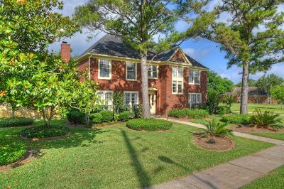 Sugar Land Single Family Home For Sale: 3919 Saint Michaels Court