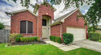 Houston Single Family Home For Sale: 1707 Dominic Court