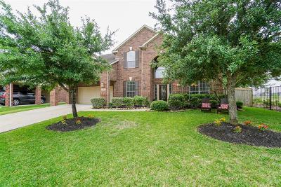 Katy Single Family Home For Sale: 25635 Durango Falls Lane
