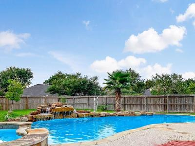 Friendswood Single Family Home For Sale: 16906 Hidden Treasure Circle