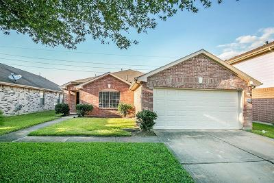 Houston Single Family Home For Sale: 9507 Eaglewood Spring Drive