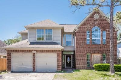 Houston Single Family Home For Sale: 10815 Perigrine Drive