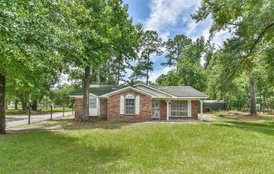Houston Single Family Home For Sale: 429 Richey Road