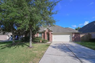 League City Single Family Home For Sale: 840 Crystal Bay Lane