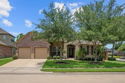 Pearland Single Family Home For Sale: 2402 Harbor Pass Drive