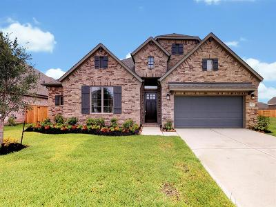 Tomball Single Family Home For Sale: 21510 Safrano Street