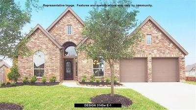 Montgomery Single Family Home For Sale: 113 Kit Fox Court