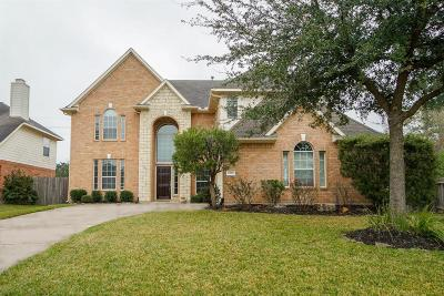 Katy Single Family Home For Sale: 6302 Alicia Way Lane