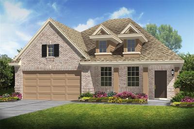 League City Single Family Home For Sale: 2847 Allesia Lane