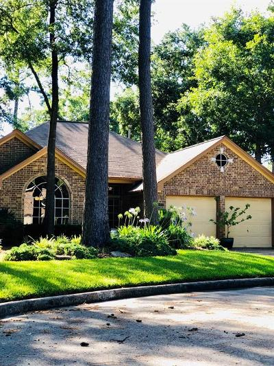 Houston Single Family Home For Sale: 5423 Fern Park Drive