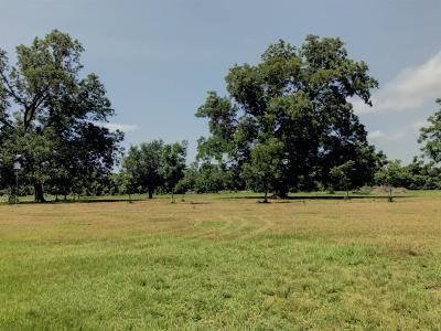 Sweeny Residential Lots & Land For Sale: 3139 Fm 524 Road