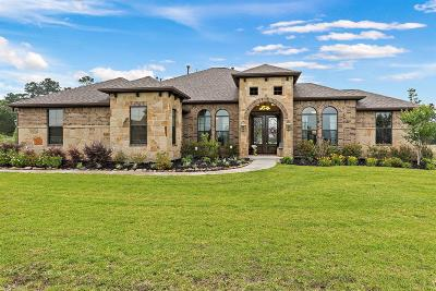 Montgomery Single Family Home For Sale: 18450 Gary Player Drive