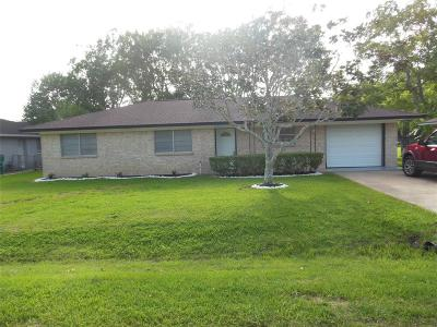 Brazoria Single Family Home For Sale: 303 Avenue F