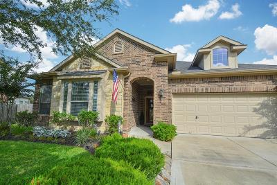 Sugar Land Single Family Home For Sale: 4131 Candle Cove Court