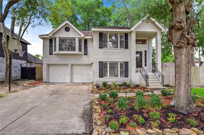 Pearland Single Family Home For Sale: 1301 James Street