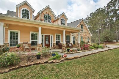 Magnolia Single Family Home For Sale: 19803 Ruby Terrace Lane