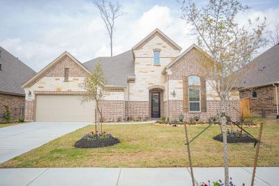 New Caney Single Family Home For Sale: 23424 Tavola Rosa Drive