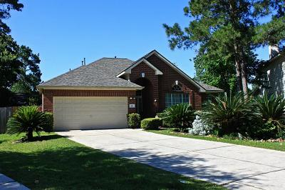 The Woodlands Single Family Home For Sale: 91 N Merryweather Circle