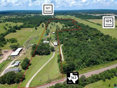 Country Home/Acreage For Sale: 1589 Fm 163