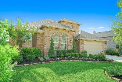 Montgomery Single Family Home For Sale: 135 Hunter Hollow Drive