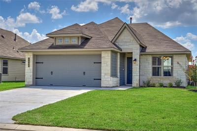 Washington County Single Family Home For Sale: 1002 Trellis Pass