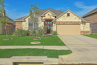 Tomball Single Family Home For Sale: 22927 Dale River