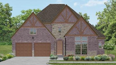 Sugar Land Single Family Home For Sale: 6107 Bargo River Court