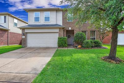 Katy TX Single Family Home For Sale: $250,000