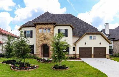 Sugar Land Single Family Home For Sale: 6006 Nowlands Run Lane