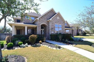Katy Single Family Home For Sale: 25907 Primrose Springs Court