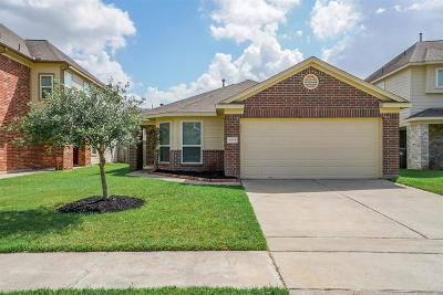 Katy Single Family Home For Sale: 3054 Thicket Path Way