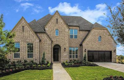 Katy Single Family Home For Sale: 2719 Briarstone Point