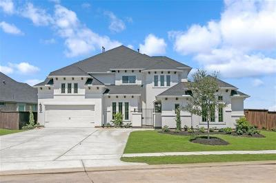 Katy Single Family Home For Sale: 7218 Praire Grass Lane