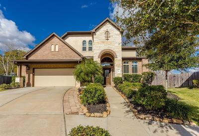 Missouri City Single Family Home For Sale: 47 Amaifi Drive