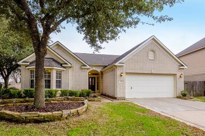 New Territory Single Family Home For Sale: 418 Darby Trails Drive