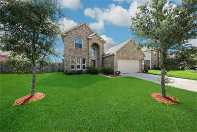 Pearland Single Family Home For Sale: 1507 Meadow Wood Drive