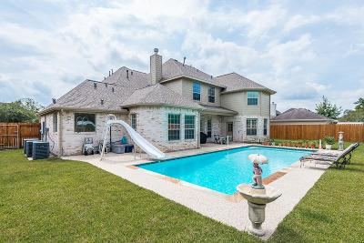 Friendswood Single Family Home For Sale: 520 Falcon Lake Drive