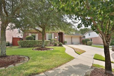 Houston Single Family Home For Sale: 12551 Clover Walk Lane