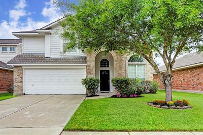 Tomball Single Family Home For Sale: 20123 Yosemite Falls Drive