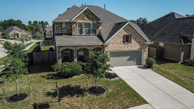 Porter Single Family Home For Sale: 21303 Huron Bend Drive