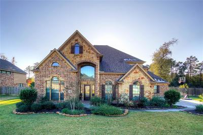 Tomball Single Family Home For Sale: 10027 Banestone Boulevard