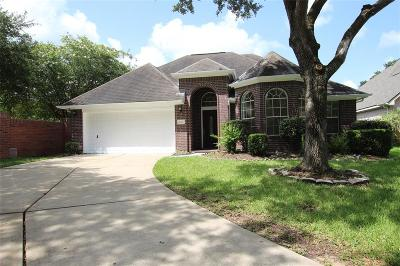 Sugar Land Single Family Home For Sale: 4934 Knights Branch Drive