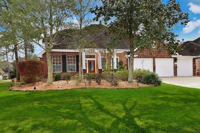 The Woodlands Single Family Home For Sale: 22 Troll Woods Court