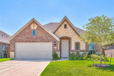 Texas City Single Family Home For Sale: 12417 Berberry Drive