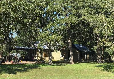 Austin County Single Family Home For Sale: 16243 Fm 109