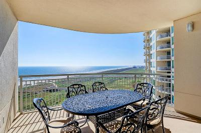 Galveston TX Mid/High-Rise For Sale: $589,000