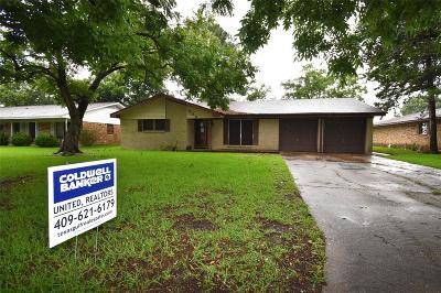 Angleton Single Family Home For Sale: 308 Leonard Street