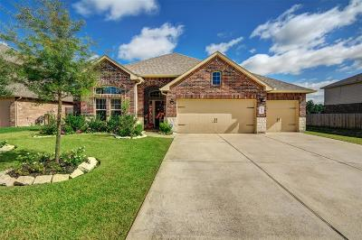 Tomball Single Family Home For Sale: 22818 Dale River Road