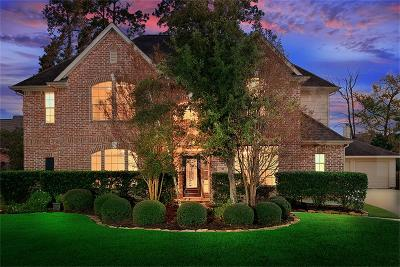 The Woodlands Single Family Home For Sale: 58 S Bardsbrook Circle